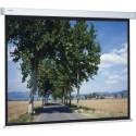 Моторизированный экран Projecta Compact RF Electrol 191x300cm MWS