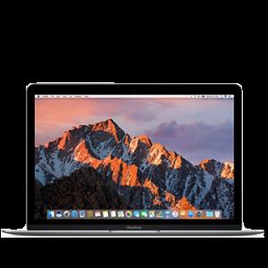 https://shop.ivk-service.com/546170-thickbox/apple-macbook-a1534-mnyg2rua-seryj-12.jpg