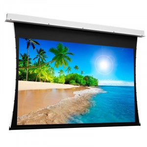 https://shop.ivk-service.com/792791-thickbox/motorizirovannyj-ekran-projecta-tensioned-descenderpro-rf-204x320-sm-va-194x310-sm-144-bd-5-sm-mw.jpg